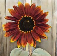 SunlitSunflower