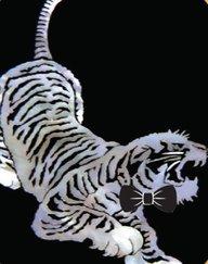 Tiger33